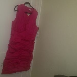 Calvin Klein fuchsia dress 22w nwt